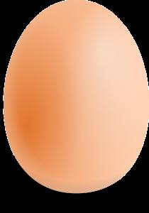 ei egg begrepen